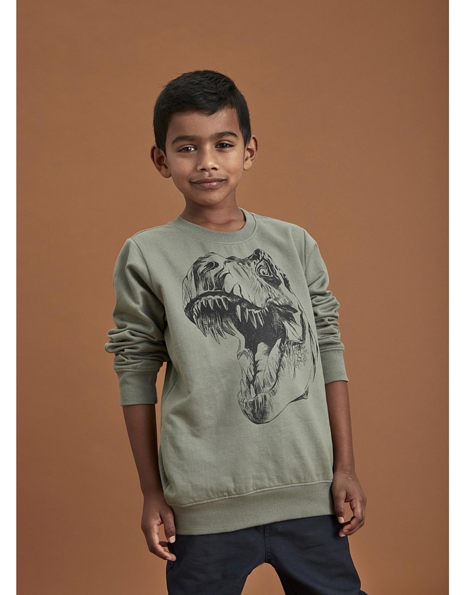 KIDS UP Kids Up Pullover Dino