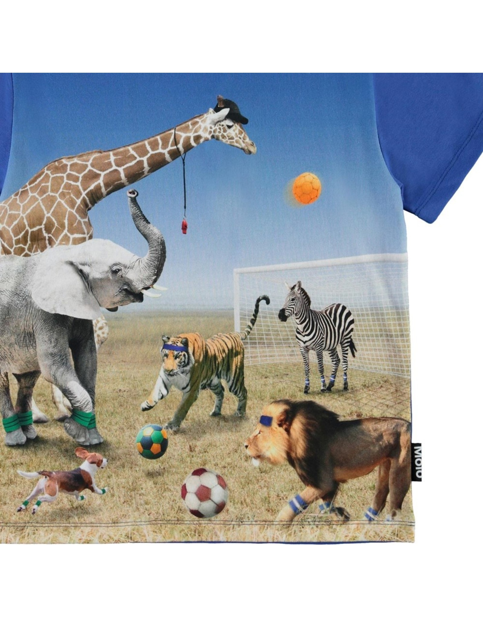 Molo Molo Roxo FOOTBALL GAME