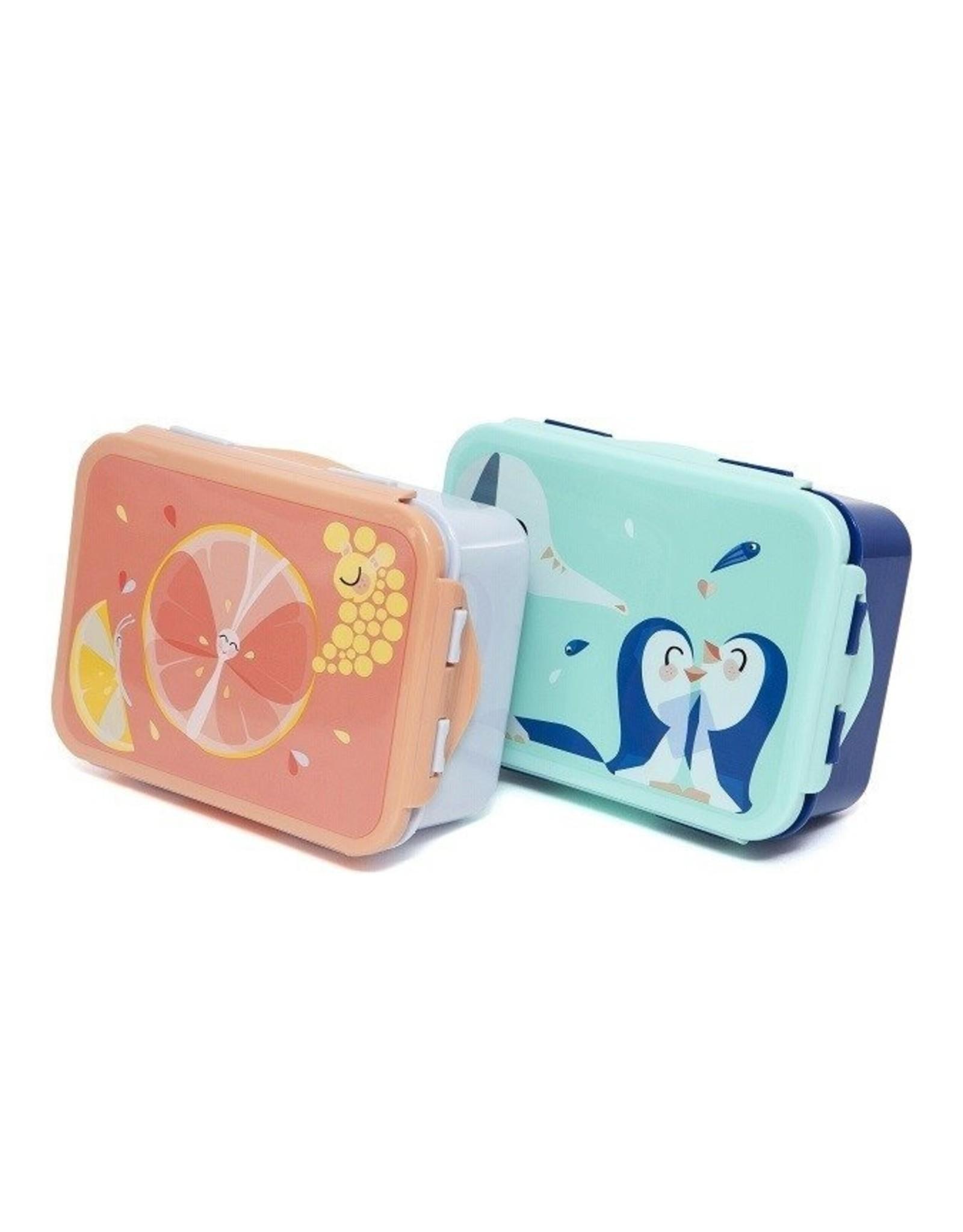 Petit Monkey Petit Monkey Lunchbox Flies