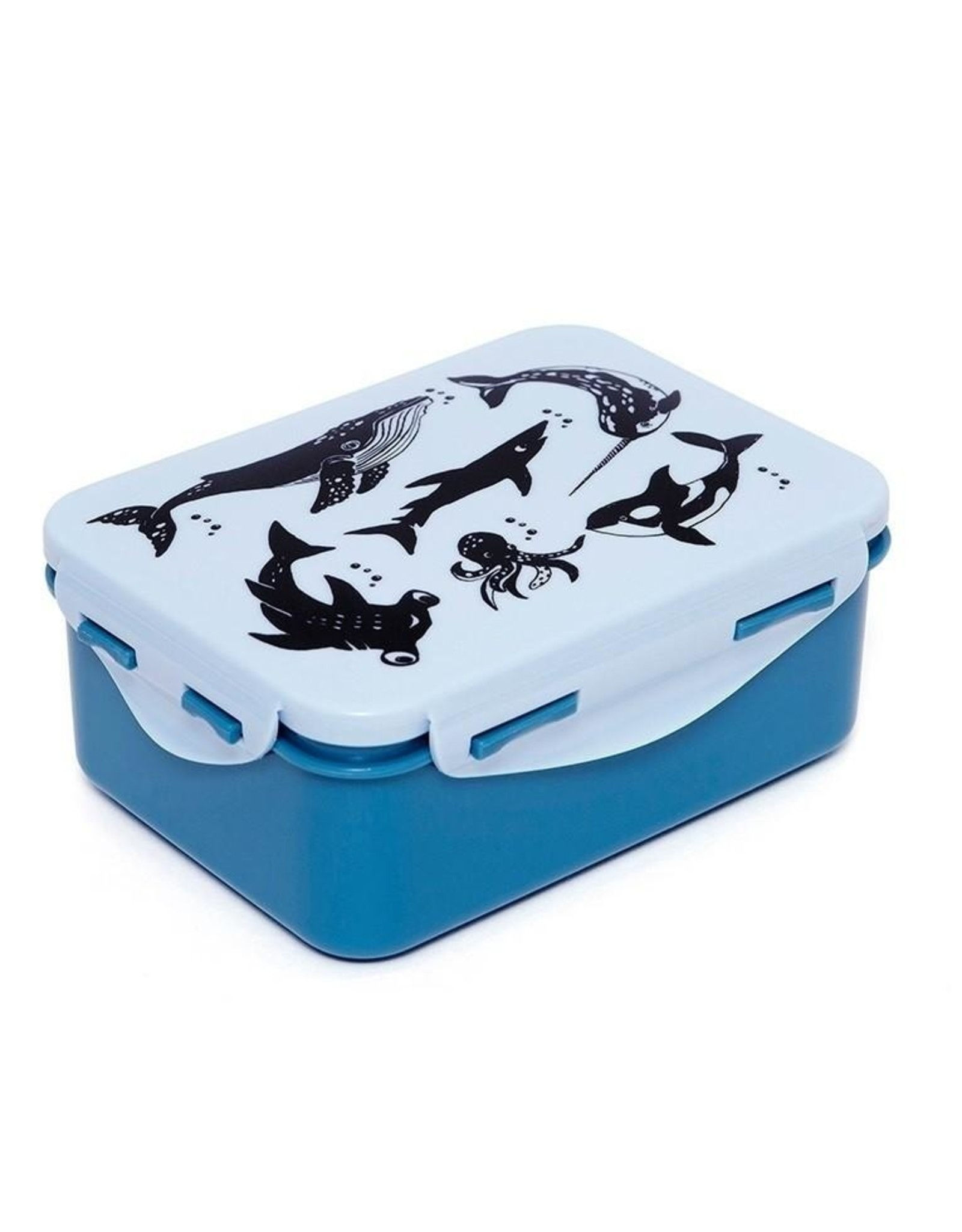 Petit Monkey Petit Monkey Lunchbox Sea Animal