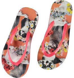 Molo Molo Zeppo Flower Power Cats