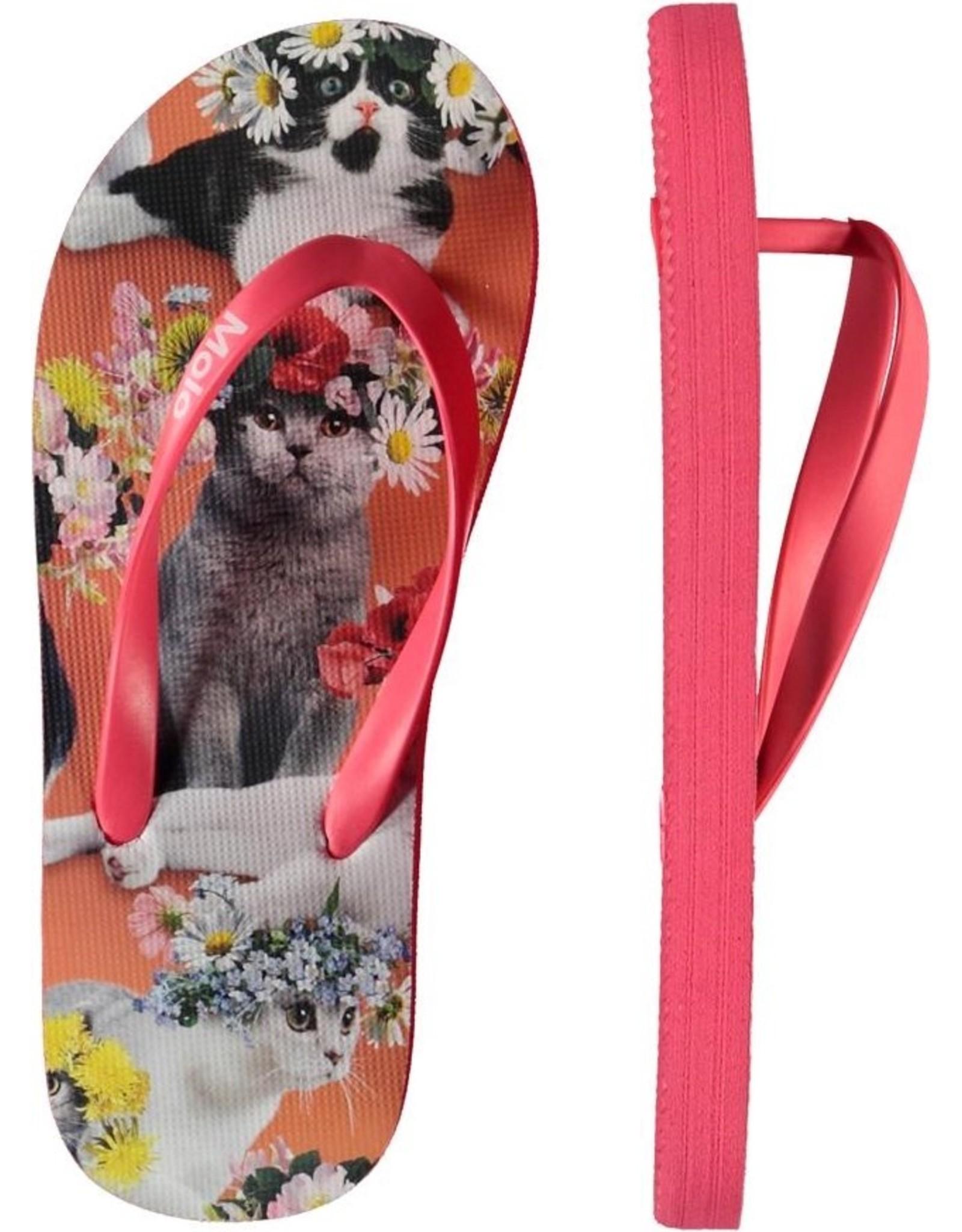 Molo Molo Zeppo Flower Power Cats