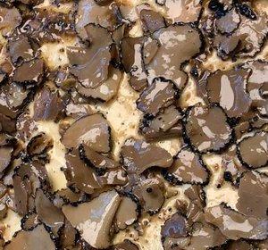 Brie met truffel