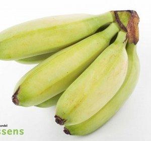Bananito pr kg cat1