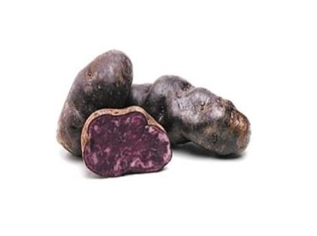 Aardappel Vitelotte (Franse)