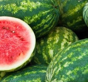 Watermeloen groot