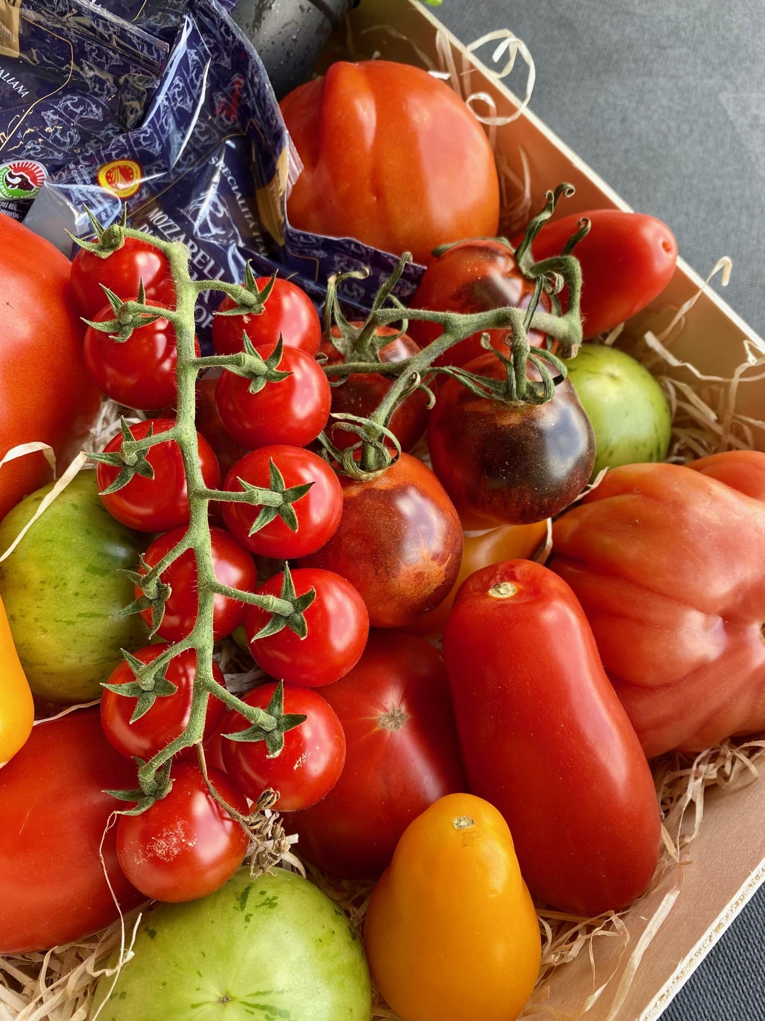 Vers d'Anvers Box Tomaten en Mozzarella di Bufala