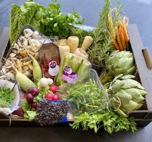 Culinaire (te redden) Groenten Box