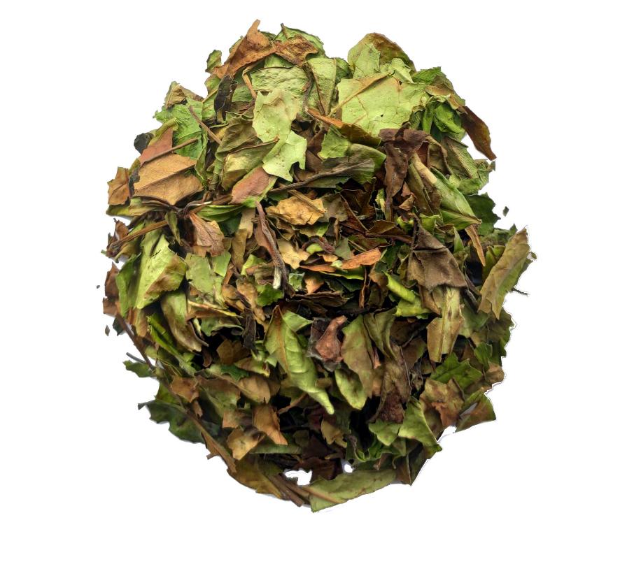 Ming Tea Witte thee Fine Pai Mu Tan BIO 50gr