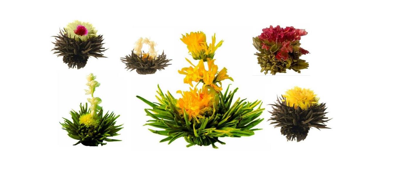 Ming Tea Luxe Verpakking van 6 Theebloemen