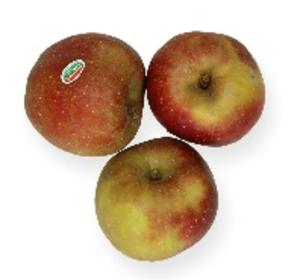 Boskoop appel 1kg