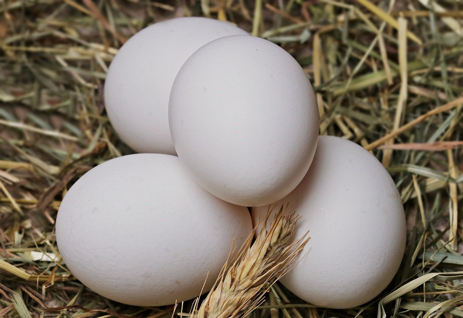 Bolderei Eieren (6stuks)
