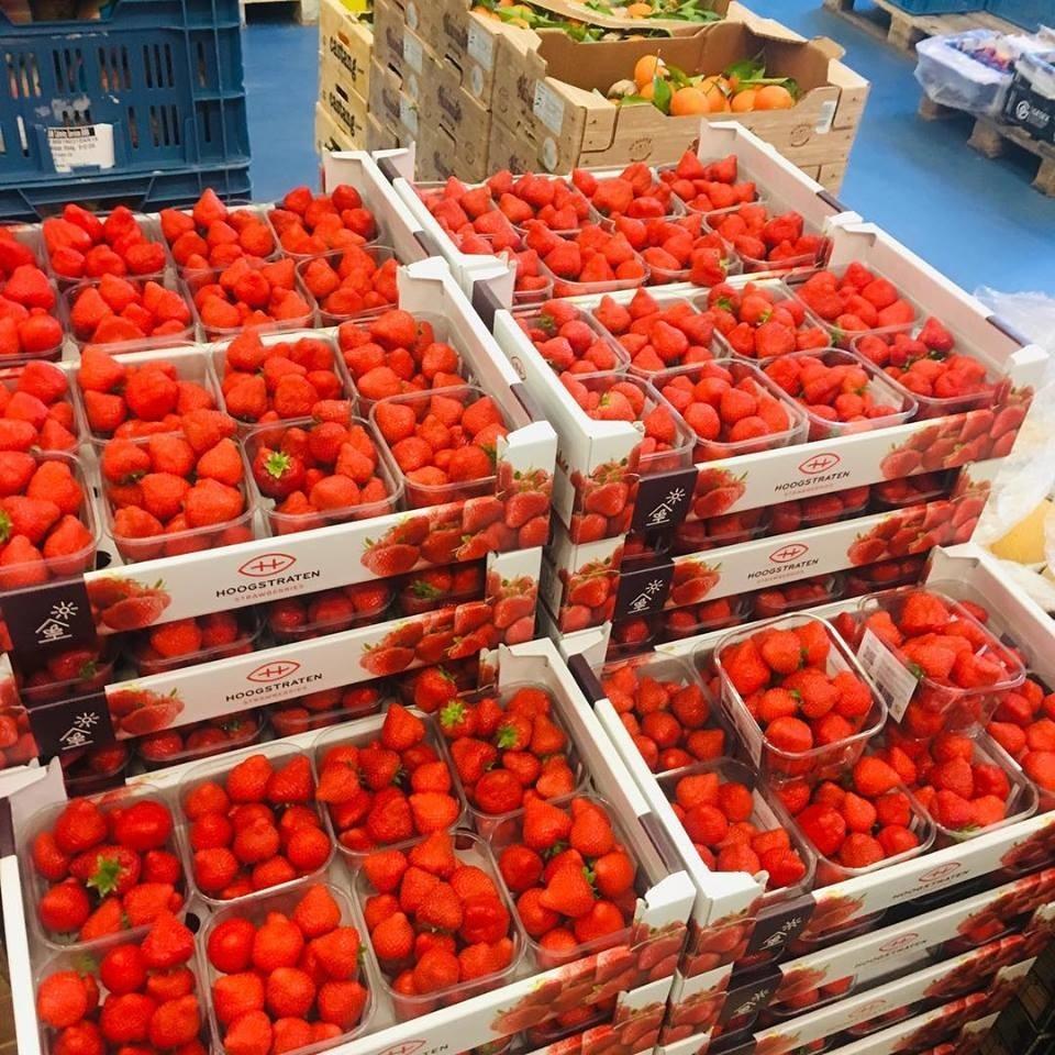 aardbeien 500 gr (Spaanse)