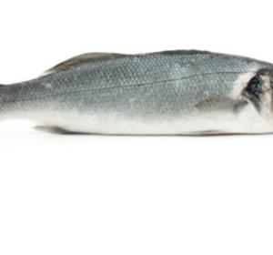 Wilde Zeebaars filet met vel 450gr