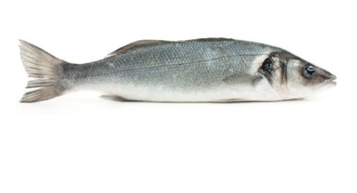 Verbiest Wilde Zeebaars filet zonder vel 400gr