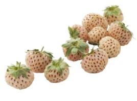 Ananas-aardbeien 125gr