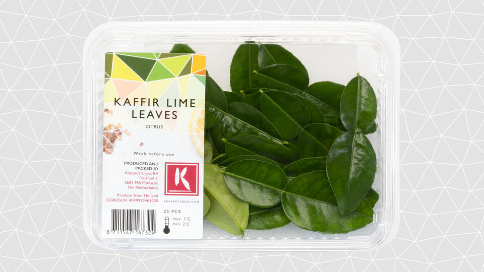 Koppert Cress Kaffir Lime Leaves (schaaltje 25st)