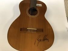 Juan Salvador Modelo 2 gitaar | Handtekening van Ryan Allen || met garantie ||