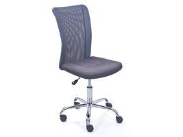 Hioshop Bonan kinder bureaustoel grijs.
