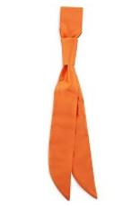 Premium Promotions Bistrodas polyester oranje