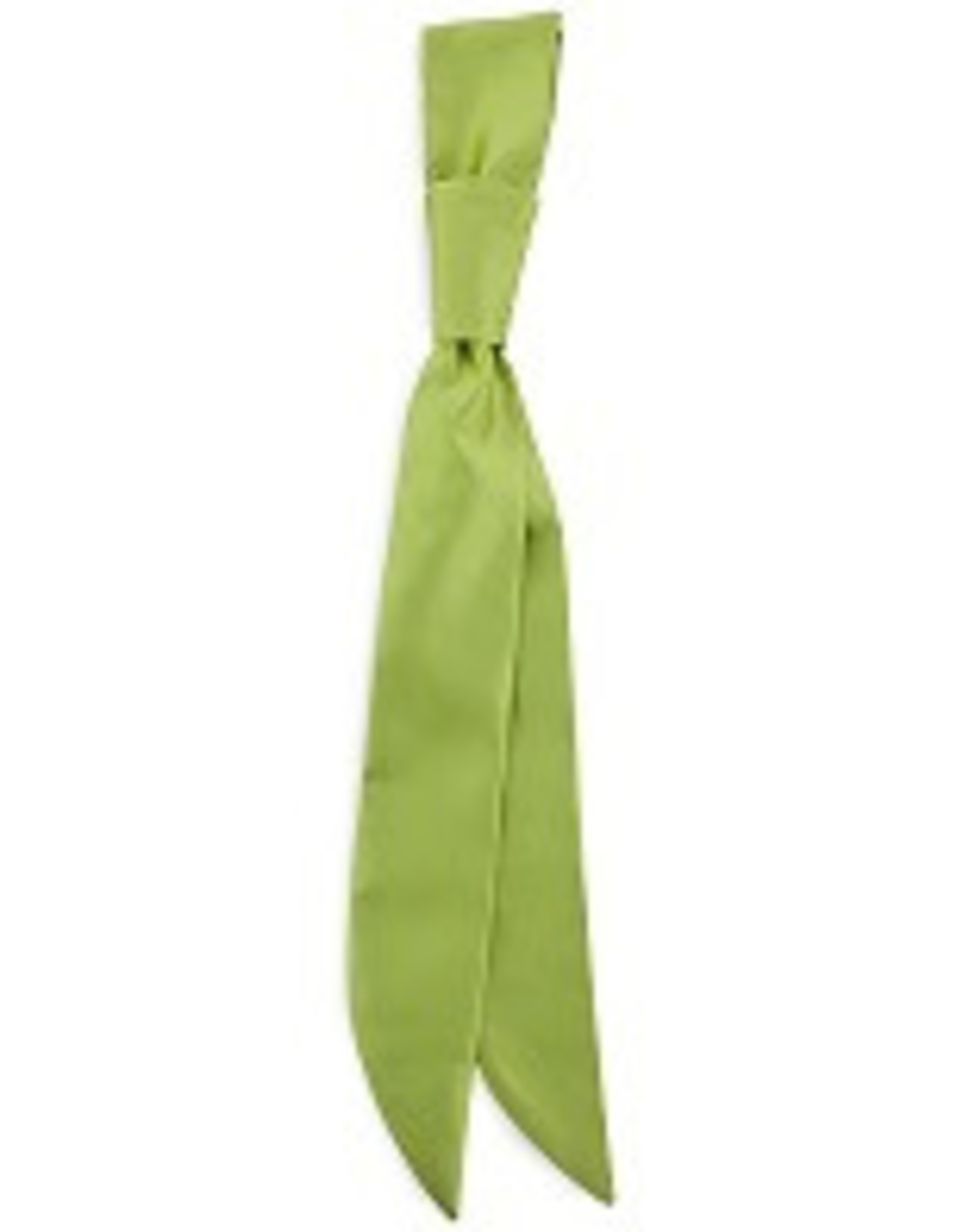 Premium Promotions Bistrodas polyester limegroen