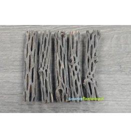 Cholla wood 10 cm