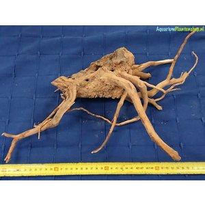 Spiderwood 74