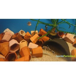 Terracotta potjes