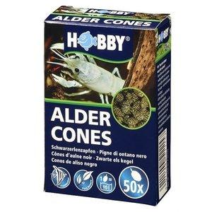 Hobby Alder Cones