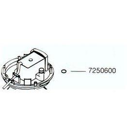 Eheim O-Ring 7250600