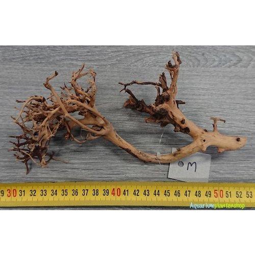 Aquascaping Twig 3
