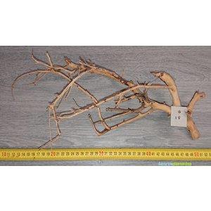 Aquascaping Twig 18