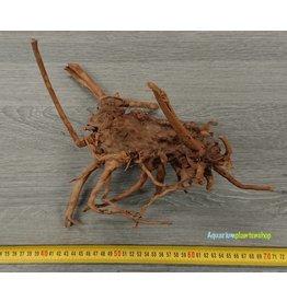 Spiderwood 48