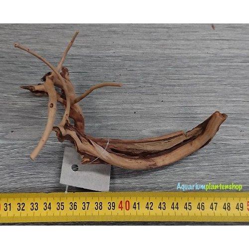 Spiderwood 102