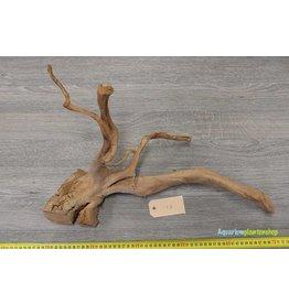 Spiderwood 17