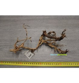Aquascaping Twig 5