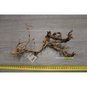 Aquascaping Twig 5