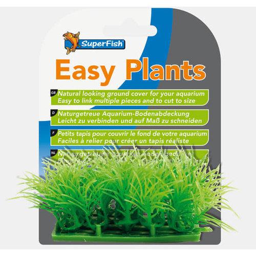 SF Easy Plants Carpet
