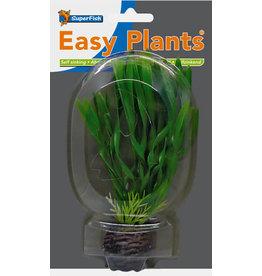 SF Easy Plants 13 cm Nr. 6