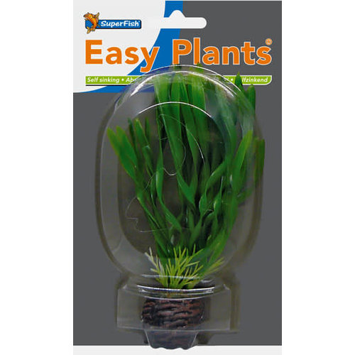 SF Easy Plants 13 cm Nr. 6
