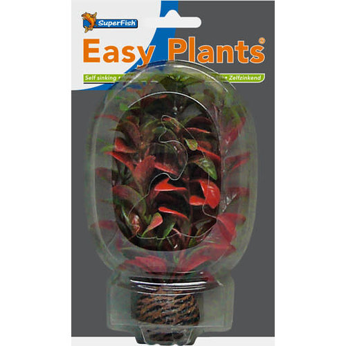 SF Easy Plants 13 cm Nr. 7