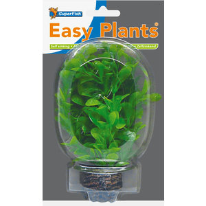 SF Easy Plants 13 cm Nr. 8