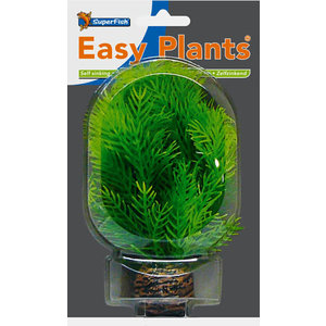 SF Easy Plants 13 cm Nr. 9