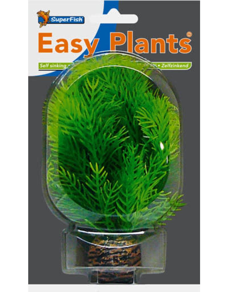 SF Easy Plants 13 cm Nr. 9