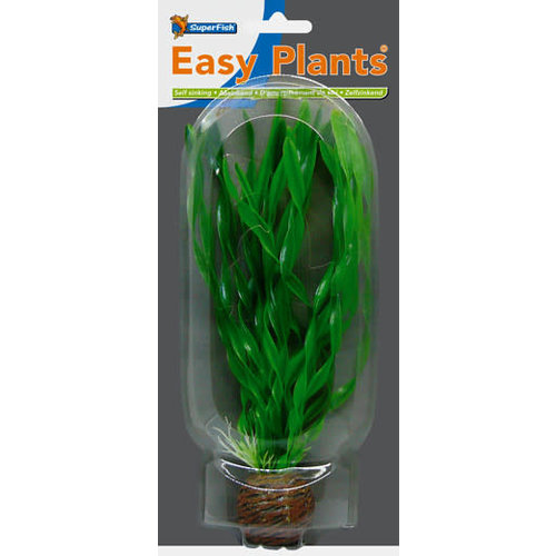 SF Easy Plants 20 cm Nr. 1