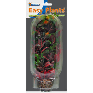 SF Easy Plants 20 cm Nr. 6