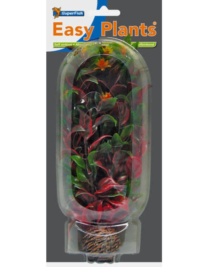 SF Easy Plants 20 cm Nr. 6