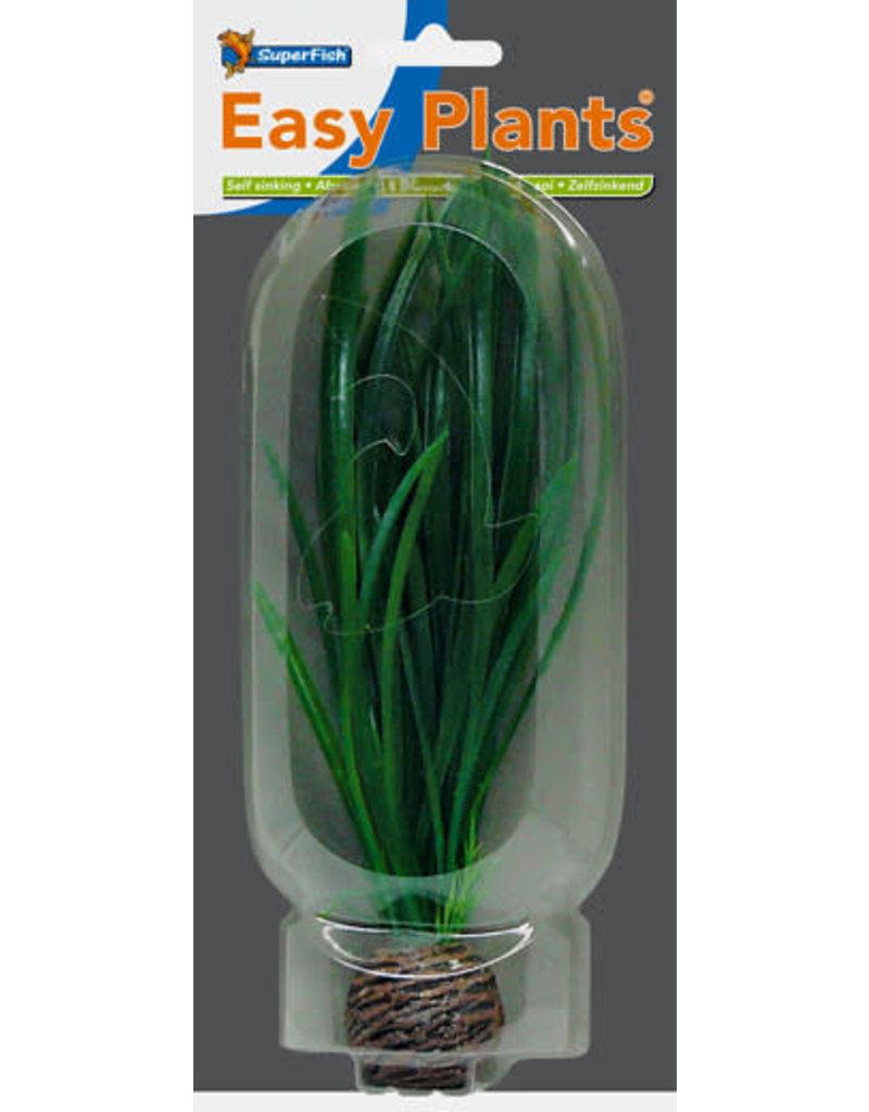 SF Easy Plants 20 cm Nr. 8