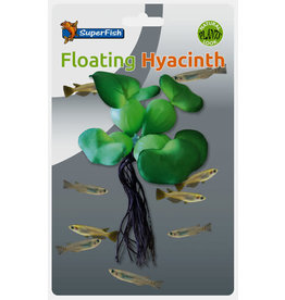 SF Easy Plants Floating Hyacinth