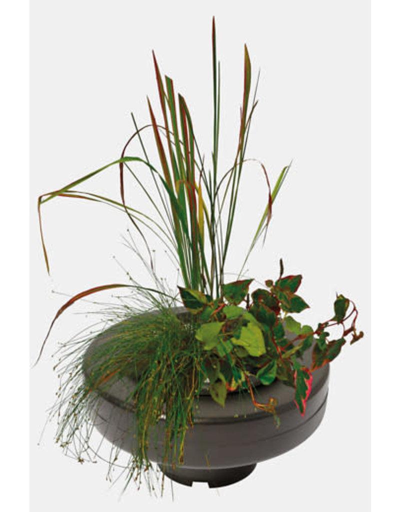 SF Floating Plant Basket 22 cm